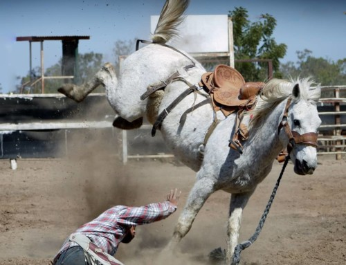 Westgate River Ranch Resort and Rodeo