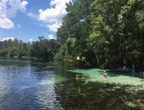 Rainbow River Florida – Why You Should Visit