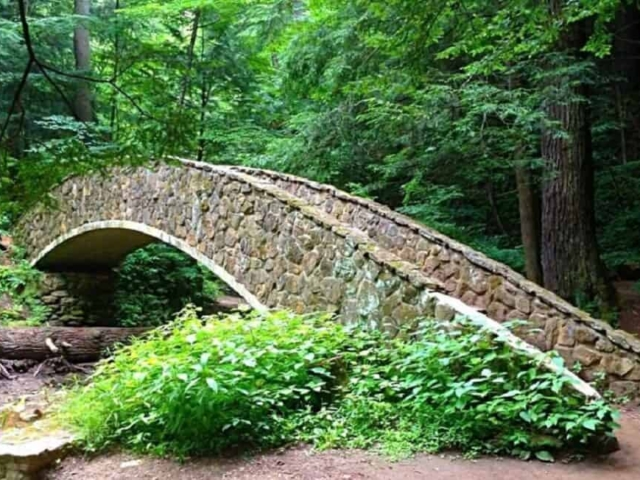 Hocking Hills State Park - The Bridge At Old Mans Cave