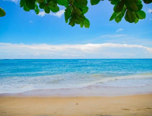 Vero Beach – A Tropical Paradise