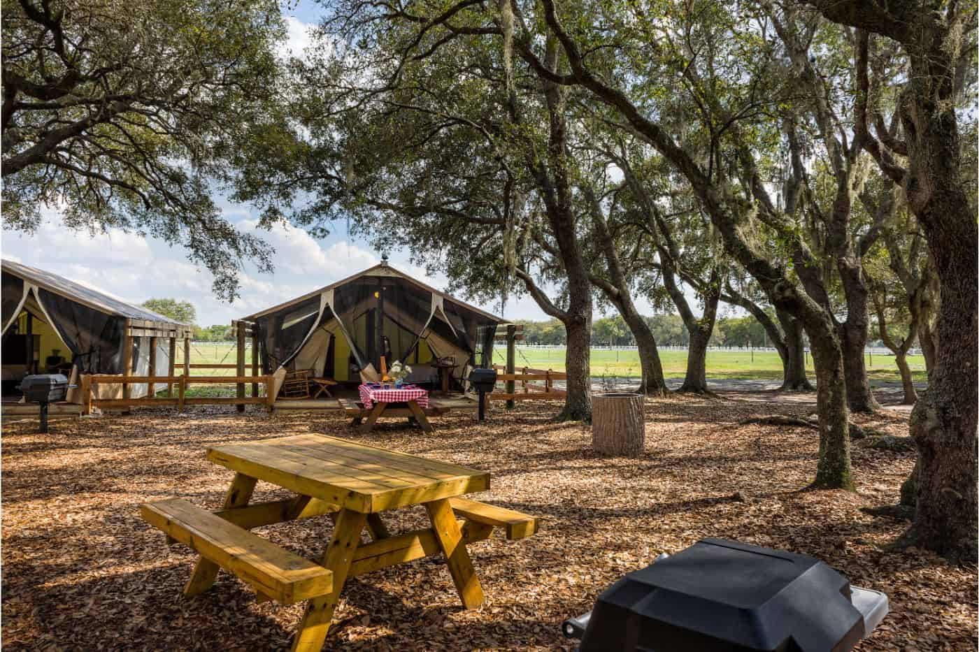Westgate River Ranch Glamping Tent