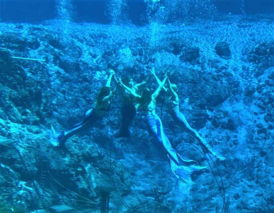 Mermaid Show Florida