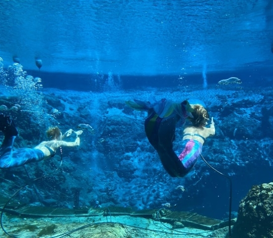 Mermaid Show in Florida