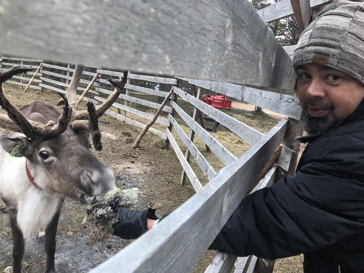 Saariselkä Reindeer Farm