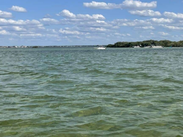 Hernando Beach Flats